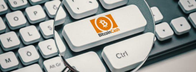 Bitcoin Cash Surges Ahead of the Fork