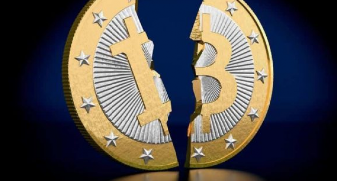 Bitcoin Forks Surge in Value Ahead of Scheduled Halvings