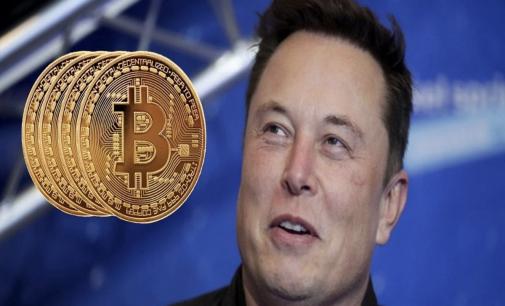 Musk Halts Bitcoin Payments at Tesla, Cites Environment Concerns
