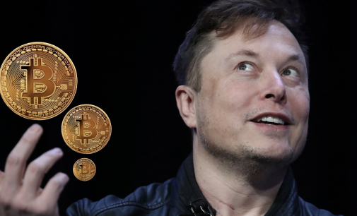 Musk Links His Financial Success to Crypto Support and Investment